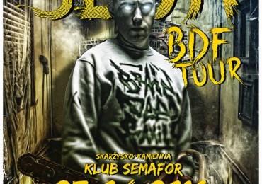 Słoń BDF Tour